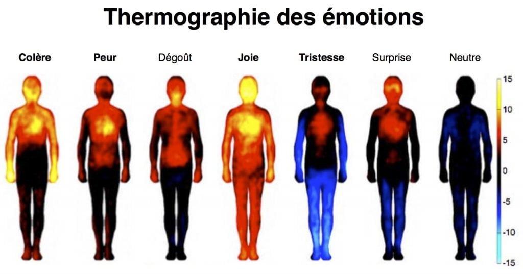 Thermographie des émotions